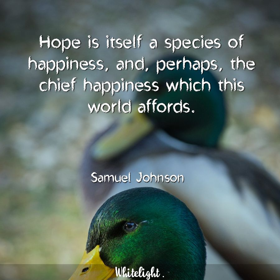 Hope is itself a species of happiness, and, perhaps, the chief happiness which this world affords. -Samuel Johnson