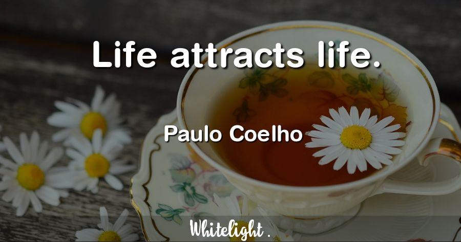Life attracts life. -Paulo Coelho