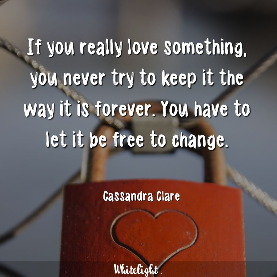 If you really love something, you never try to keep it the way it is forever. You have to let it be free to change.  -Cassandra Clare