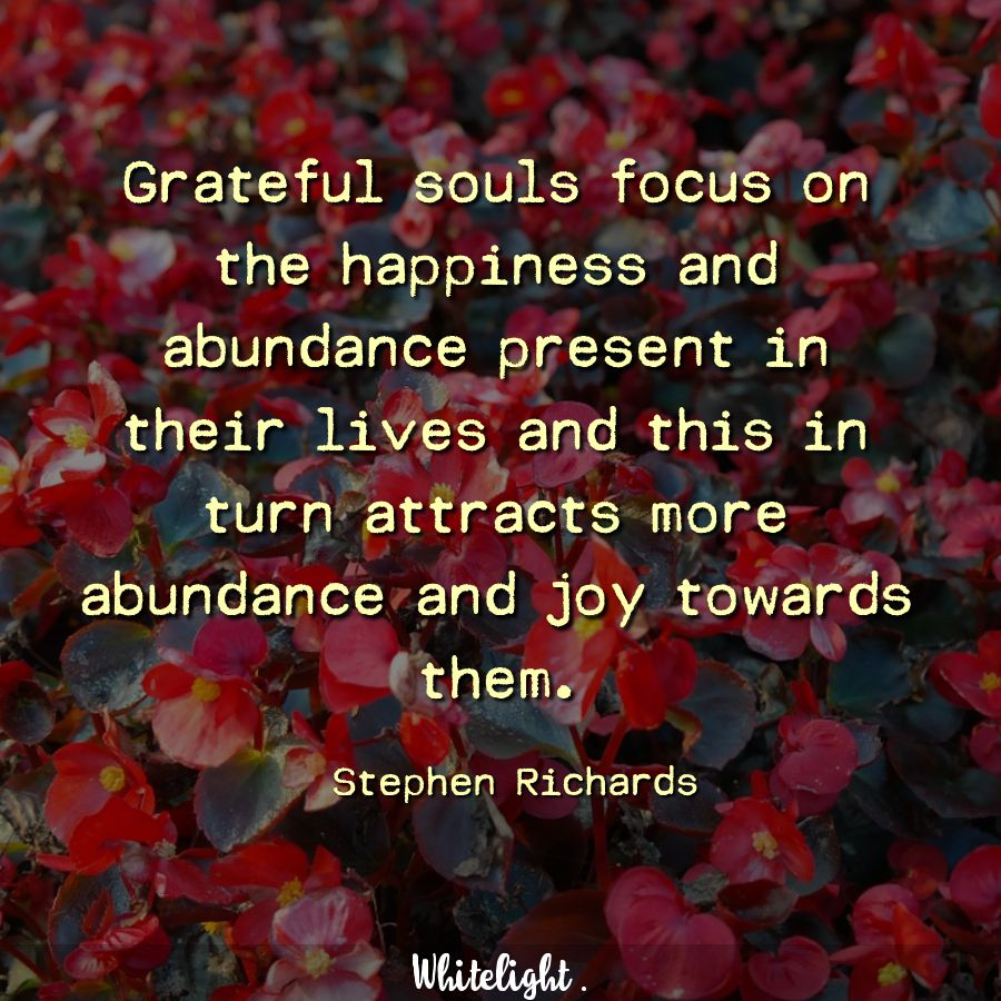 Grateful souls focus on the happiness and abundance present in their lives and this in turn attracts more abundance and joy towards them.  -Stephen Richards
